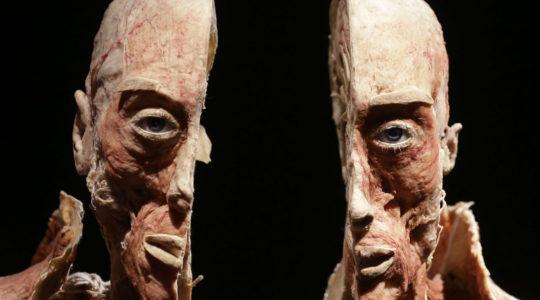 Protestujeme proti neetickosti, protiprávnosti a škandalóznosti výstavy mŕtvych ľudských tiel